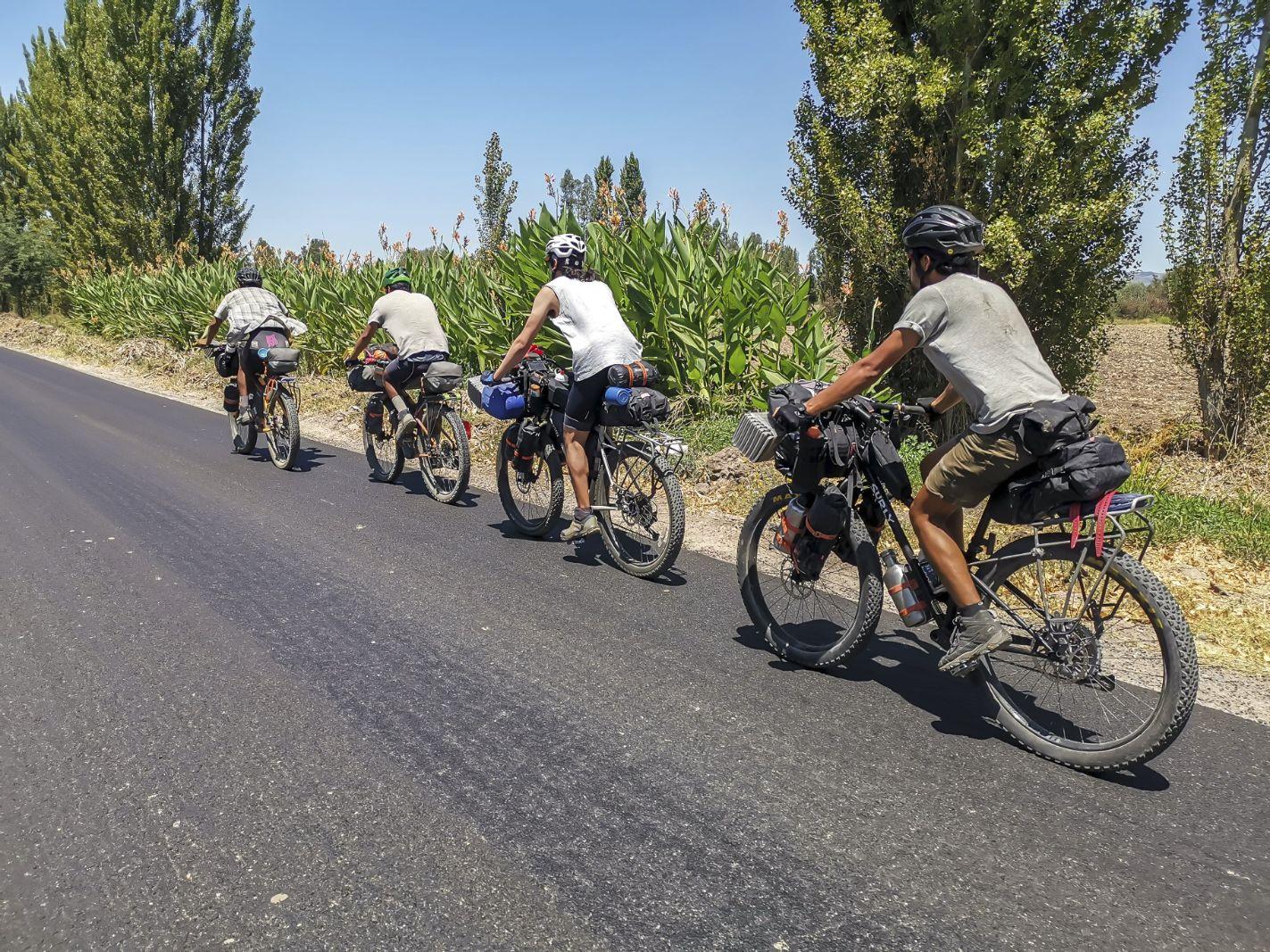 El Camino del Pehuén blog post 2