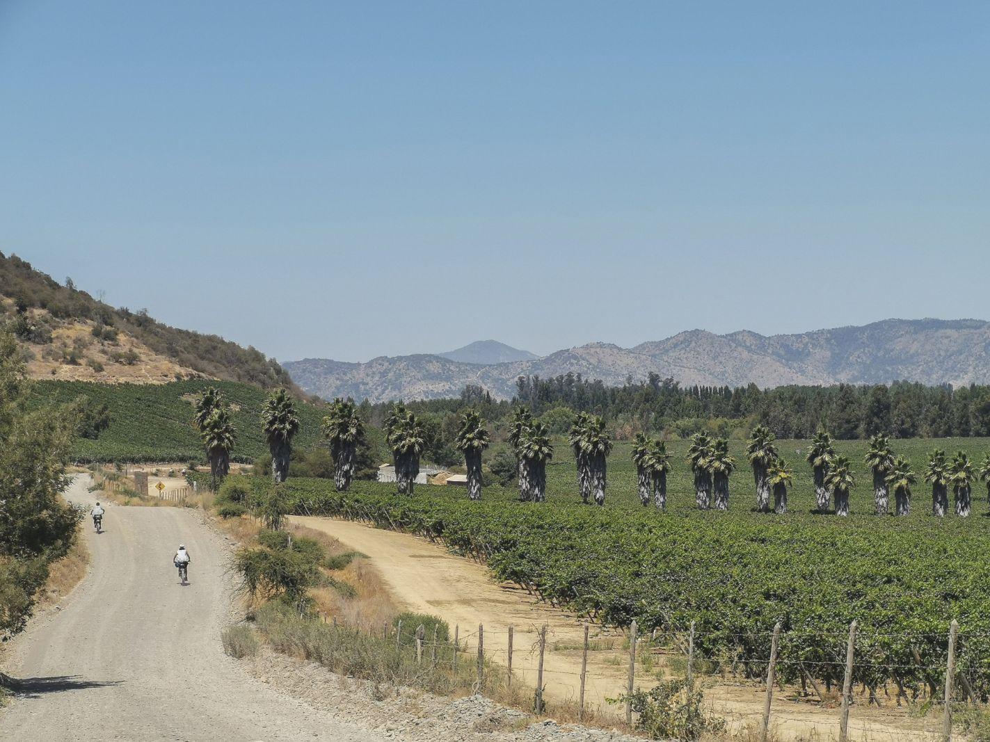 El Camino del Pehuén bikepacking 5